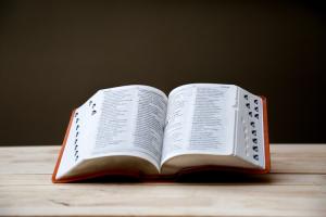 El sustantivo, el adjetivo y el pronombre