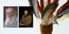 Literatura Russa de Realismo: autores