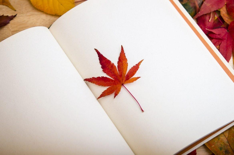 Viernes de lectura: 33 ideas para una comunicación de éxito
