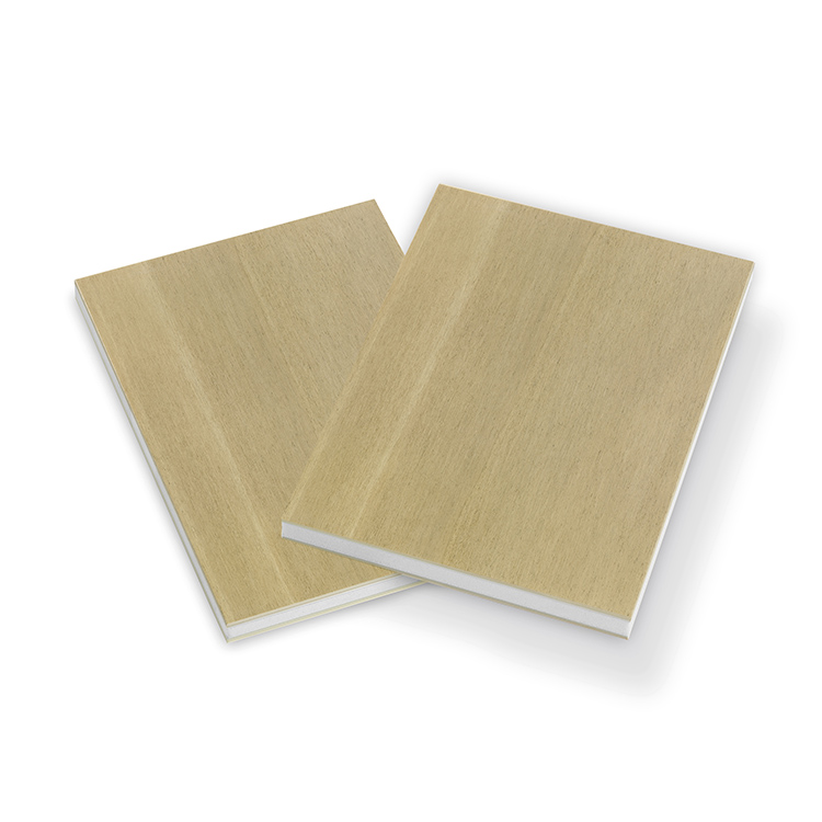 garnica_plywood_ultralight_duraply