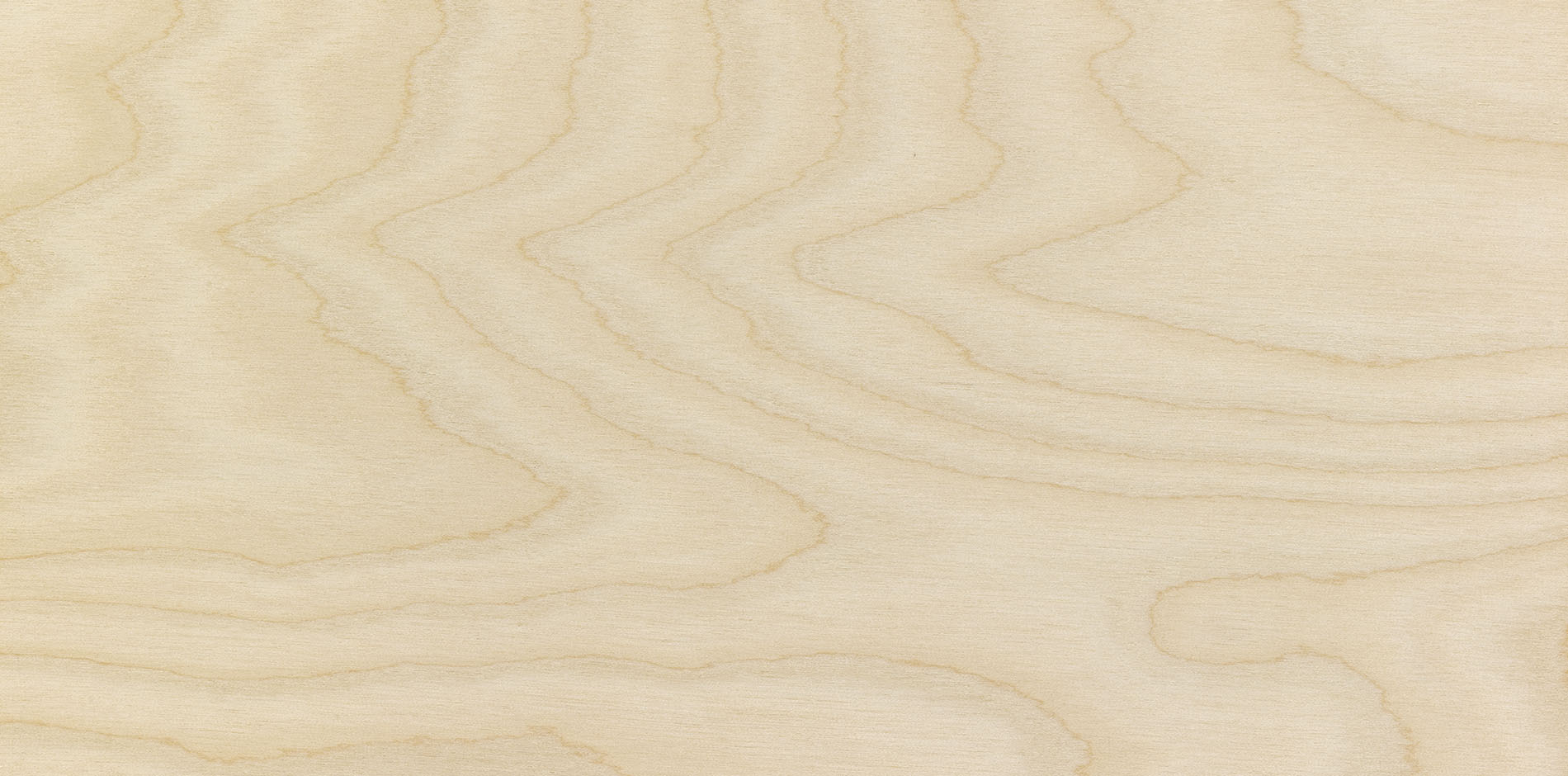garnica_plywood_birch_2