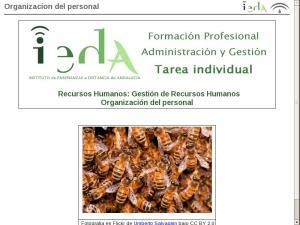 Organizacion del personal