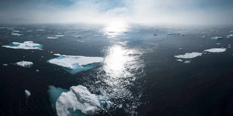 Viernes de lectura: los inversiones y la emergencia climática
