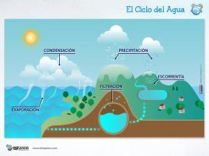 Tarea cooperativa sobre El Ciclo de Agua