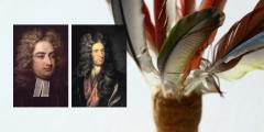 Littérature britannique du siècle des Lumières: auteurs
