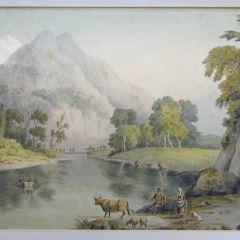 Vista de un lago