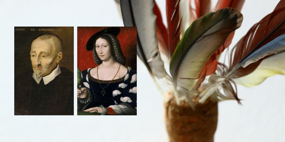 Literatura francesa del Renaixement: autors