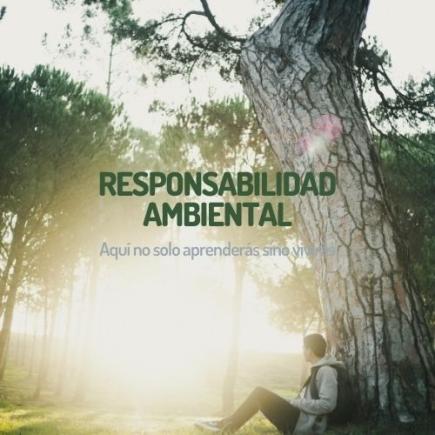 Responsabilidad Ambiental y Logística