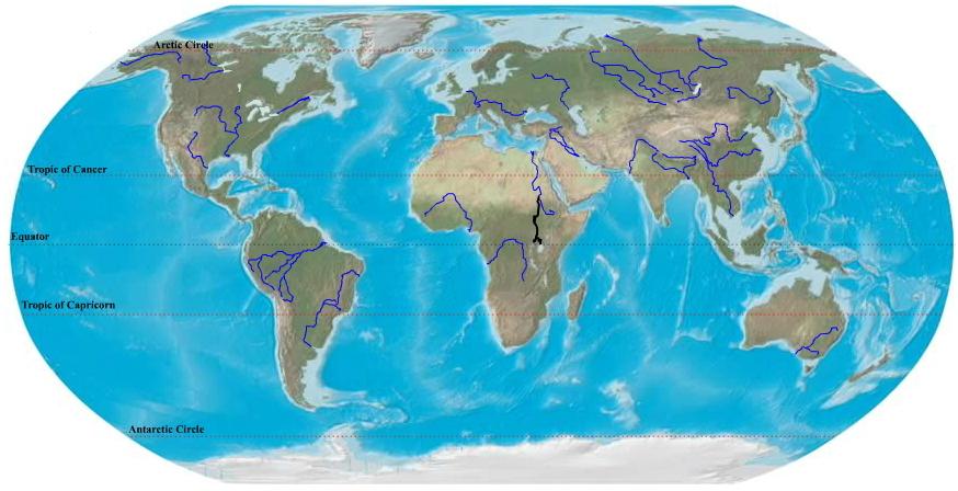 Longest rivers in the world. Ilike2learn