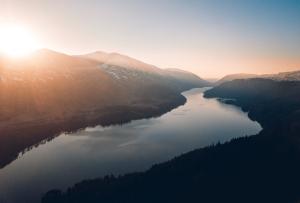 Ecosistemas: características y componentes