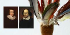 British Literature of Classicism and Baroque: authors