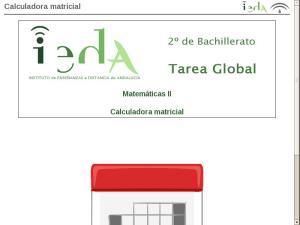 Calculadora matricial
