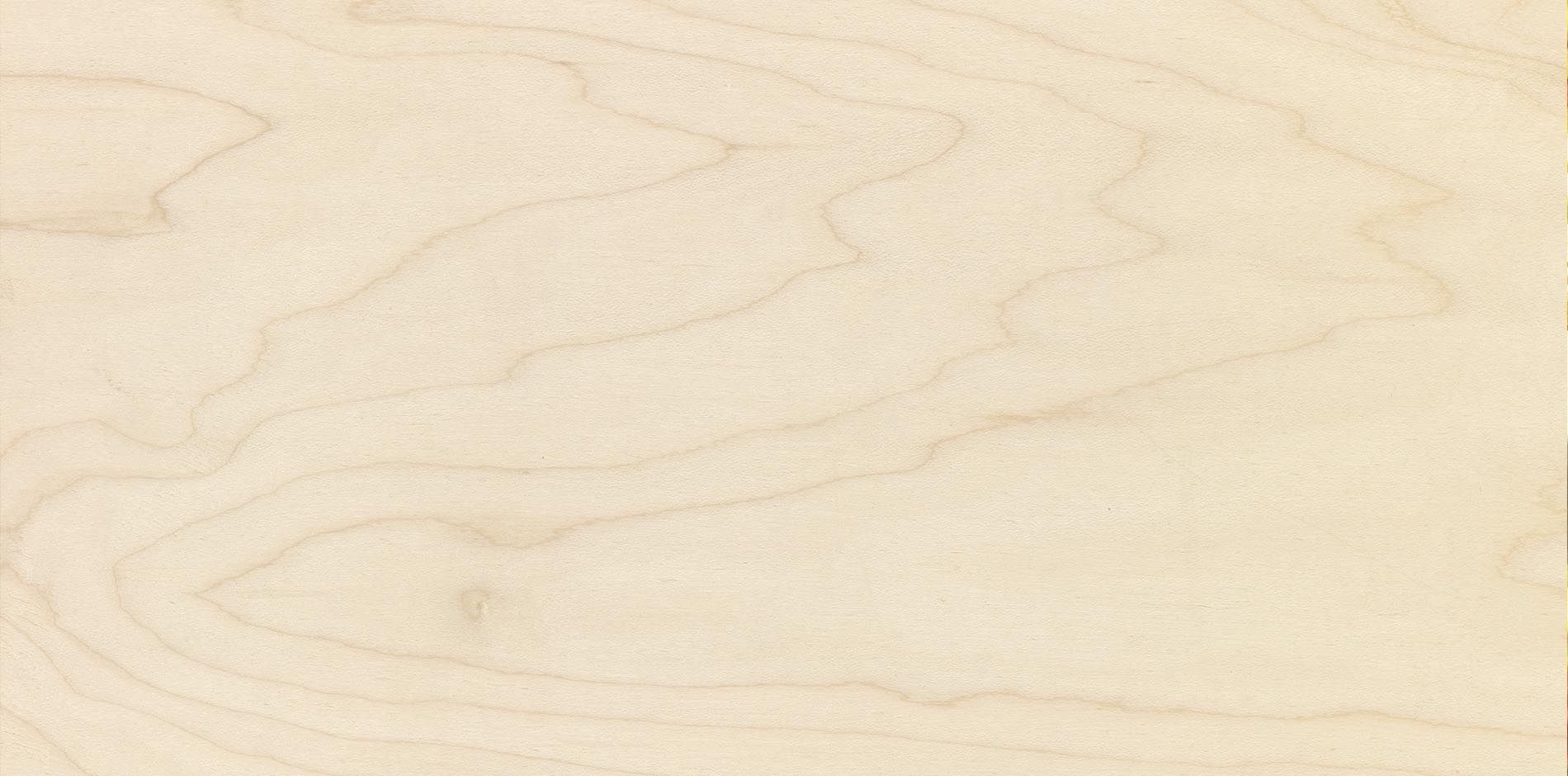 garnica_plywood_maple_2