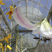 Garnica poplars feature in an exhibition at the Palacio de Cristal in Madrid