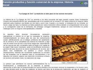 Función productiva y función comercial de la empresa: Elementos comunes de la unidad