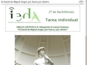 El David de Miguel Angel, por fuera y por dentro