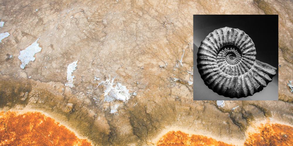 Geologische Zeit: Äonen