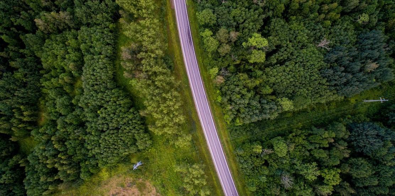 El impacto de COVID en la gestión de la sostenibilidad empresarial