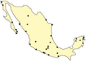 Tourist destinations of Mexico. Lizard Point