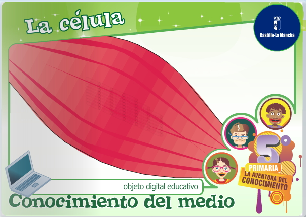 La célula (Cuadernia)