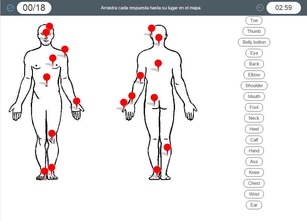 Partes del cuerpo humano en inglés. Juego interactivo (Cerebrity)