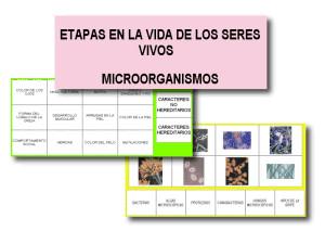 Seres vivos y microorganismos
