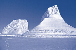 La Antártida: tierra de hielo. Pregunta liberada TIMSS-PIRLS de comprensión lectora
