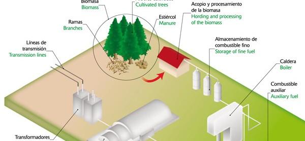 Energías renovables (Icarito)