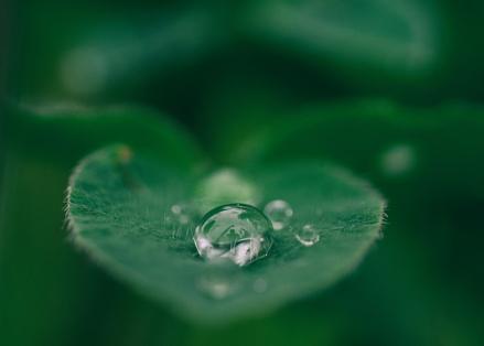 Obtenemos agua potable. Métodos para la depuración del agua. Experimento de Medio ambiente. (Instrucciones para el profesorado)