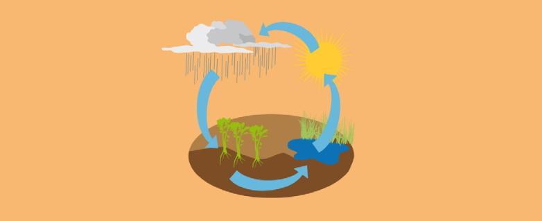 El ciclo del agua.  Actividad de Medio Ambiente para niños de 4 a 7 años