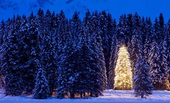 Navidad: claves para una buena redacción (Fundéu BBVA)