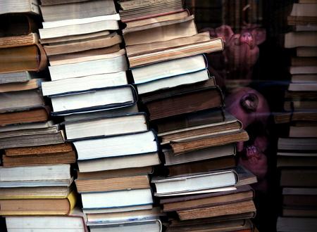 """La lengua y  literatura del siglo XIX: """"Quien tiene la palabra, tiene la espada"""""""