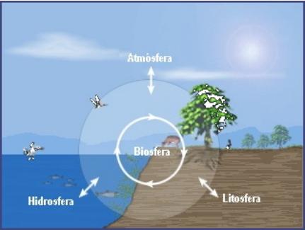 Biosfera y ecosistemas