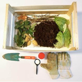 Aprovechamiento de la basura orgánica. Experimento de Medio ambiente para niños de 8 a 12 años