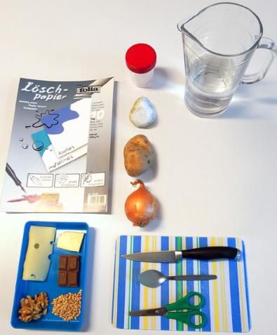 Detectives de la grasa. Experimento alimenticio para niños de 8 a 12 años