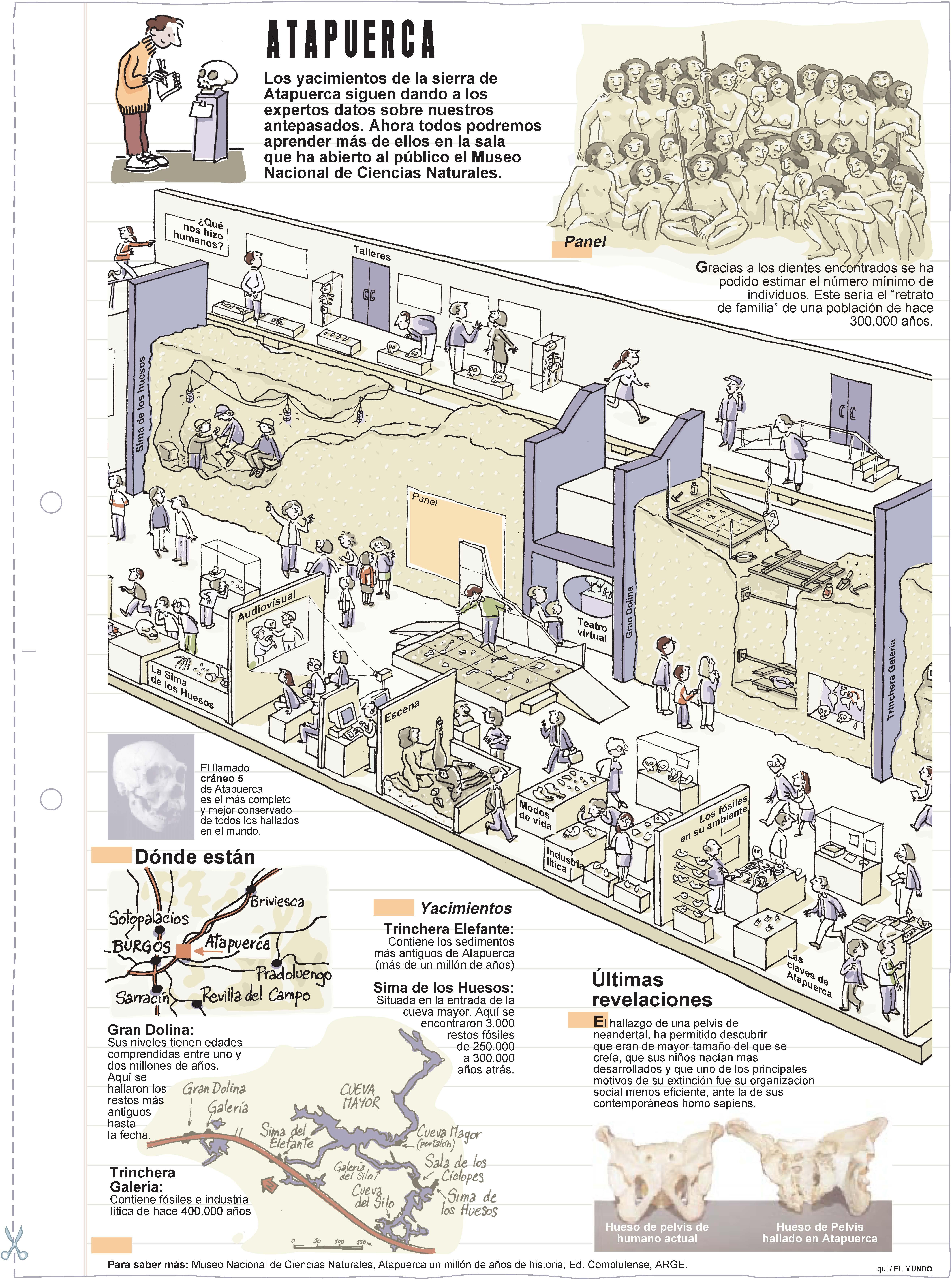 Atapuerca. Láminas de El Mundo
