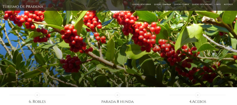 Proyecto Turismo de Prádena , una experiencia de Aprendizaje Servicio en el entorno rural