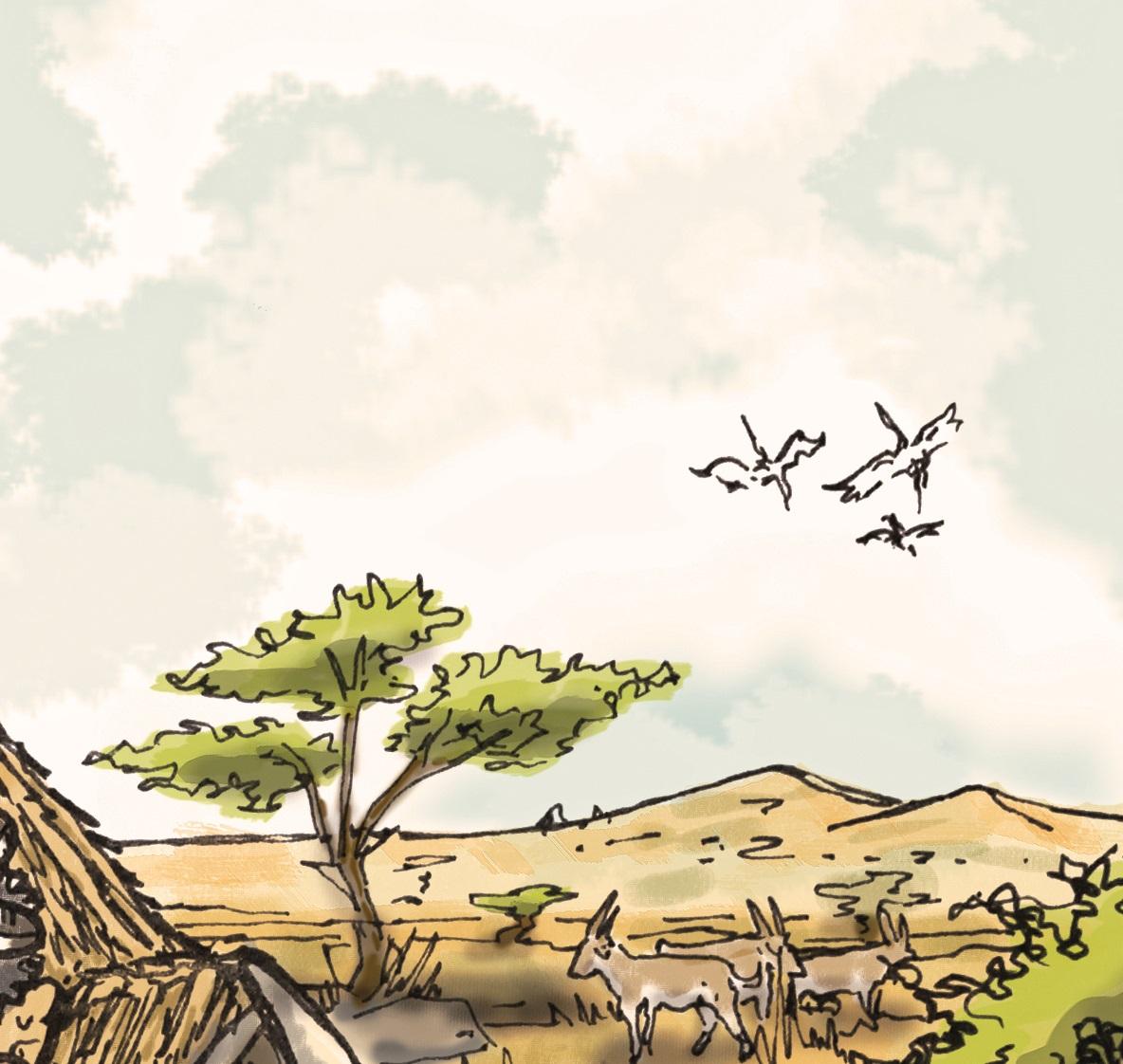 ACTIVIDADES DE GEOGRAFÍA FÍSICA SOBRE ÁFRICA: RELIEVE, PAISAJE Y CLIMA