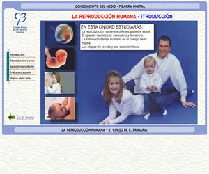 La reproducción humana – Conocimiento del medio – 3º Ciclo de E. Primaria – Unidad didáctica.