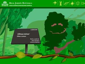Olmo Pantalones nos presenta el Real Jardín Botánico de Madrid (Museo Virtual de la Ciencia CSIC)