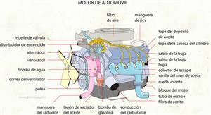 Motor (Diccionario visual)