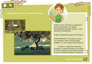 Determinar un animal. Biología y Geología para 3º ciclo de Primaria