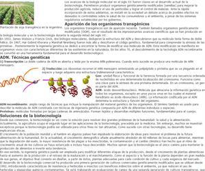 Los transgénicos en la agricultura