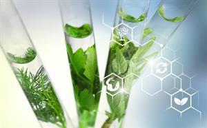 Videoclase: Biotecnología