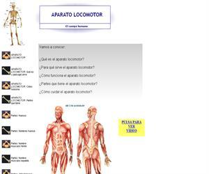 Aparato Locomotor (Educantabria)