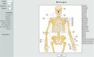 Ejercicios de Anatomía humana (Thatquiz)