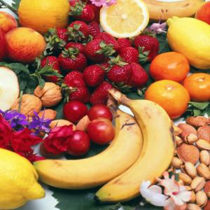 Alimentos y nutrientes (Plan Ceibal)