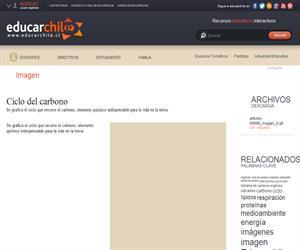Ciclo del carbono (Educarchile)