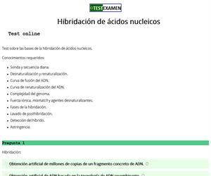 Test sobre hibridación de ácidos nucleicos