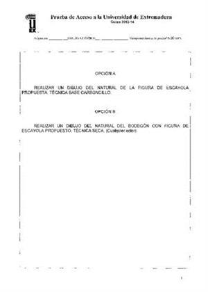 Examen de Selectividad: Dibujo artístico. Extremadura. Convocatoria Junio 2014